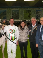 Fiera Montichiari 2012